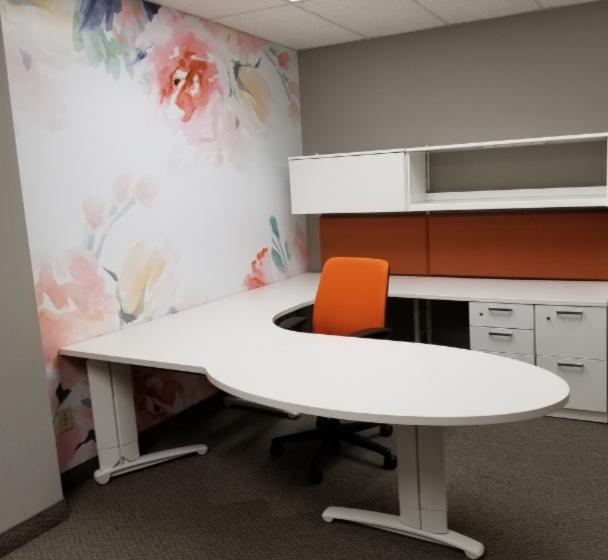 Decorative custom office wall mural